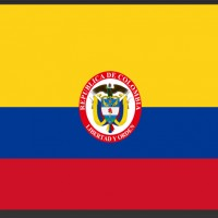 National federation: Colombian Association of Mixed Martial Arts