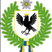 Ivano-Frankivsk regional MMA Federation