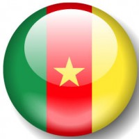 National federation: National League Mixed Martial Arts  Cameroon