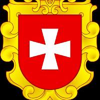 Rivne regional MMA Federation