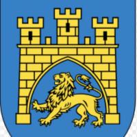 Lviv regional MMA Federation