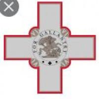 National federation: Malta Mixed Martial Arts Association