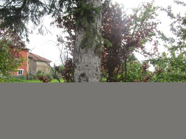 -eu-west-1.amazonaws.com/mobilia/Portals/inmoatrio/Images/3825/2218590