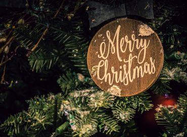 Branch celebration christmas 1656564