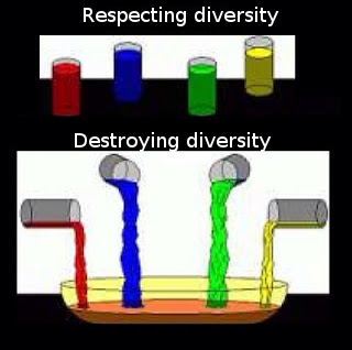Diversity+the+difference+between+a+melting+pot+and+a+diverse_402ffc_5318586.png