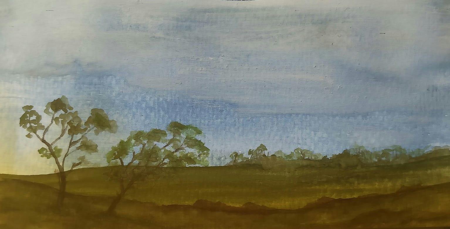 overcast foothills.jpg
