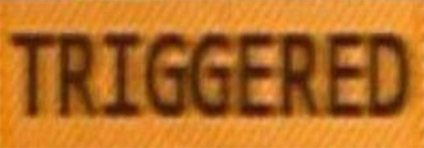 triggered.jpg
