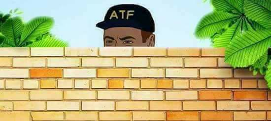 atf peering over a wall.jpg