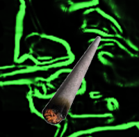 emeraldblunt.PNG