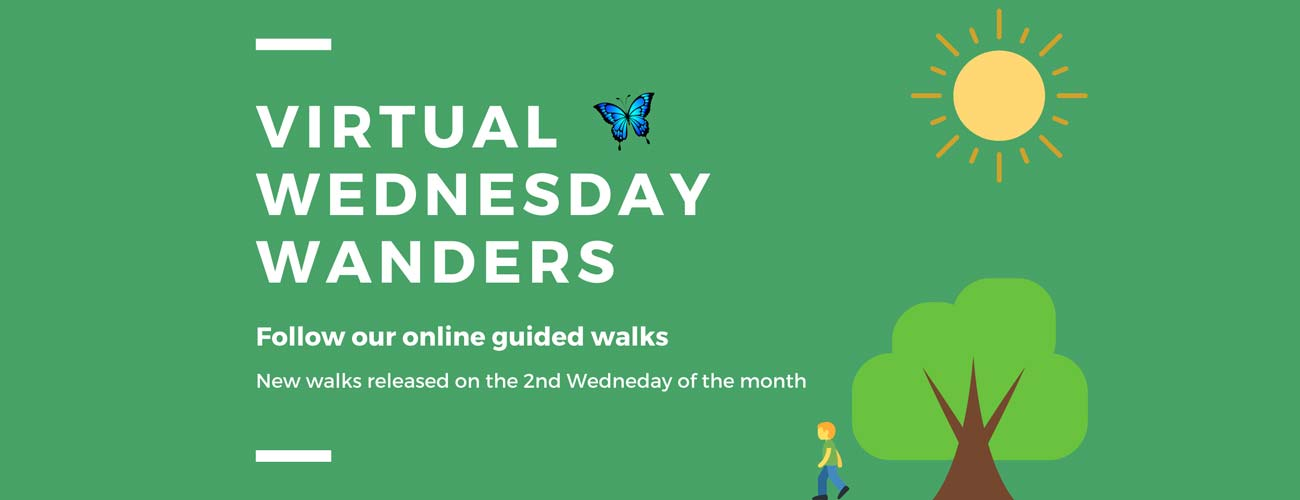 Virtual  Wanders