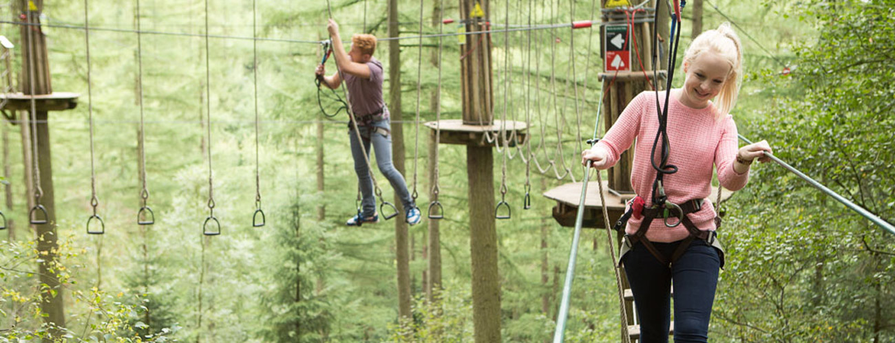 10% Off Tree Top Adventure