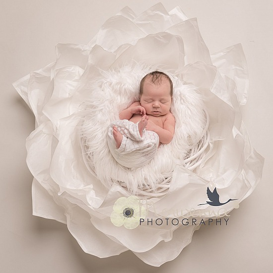 Bespoke Newborn sessions