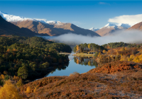 Glen Affric Walks