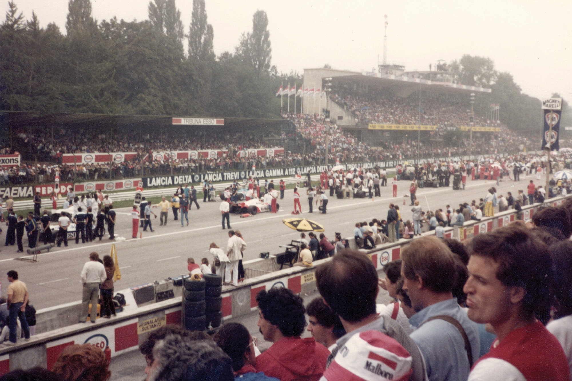 A pre-race view of the 1981 Italian Grand Prix grid from the grandstands