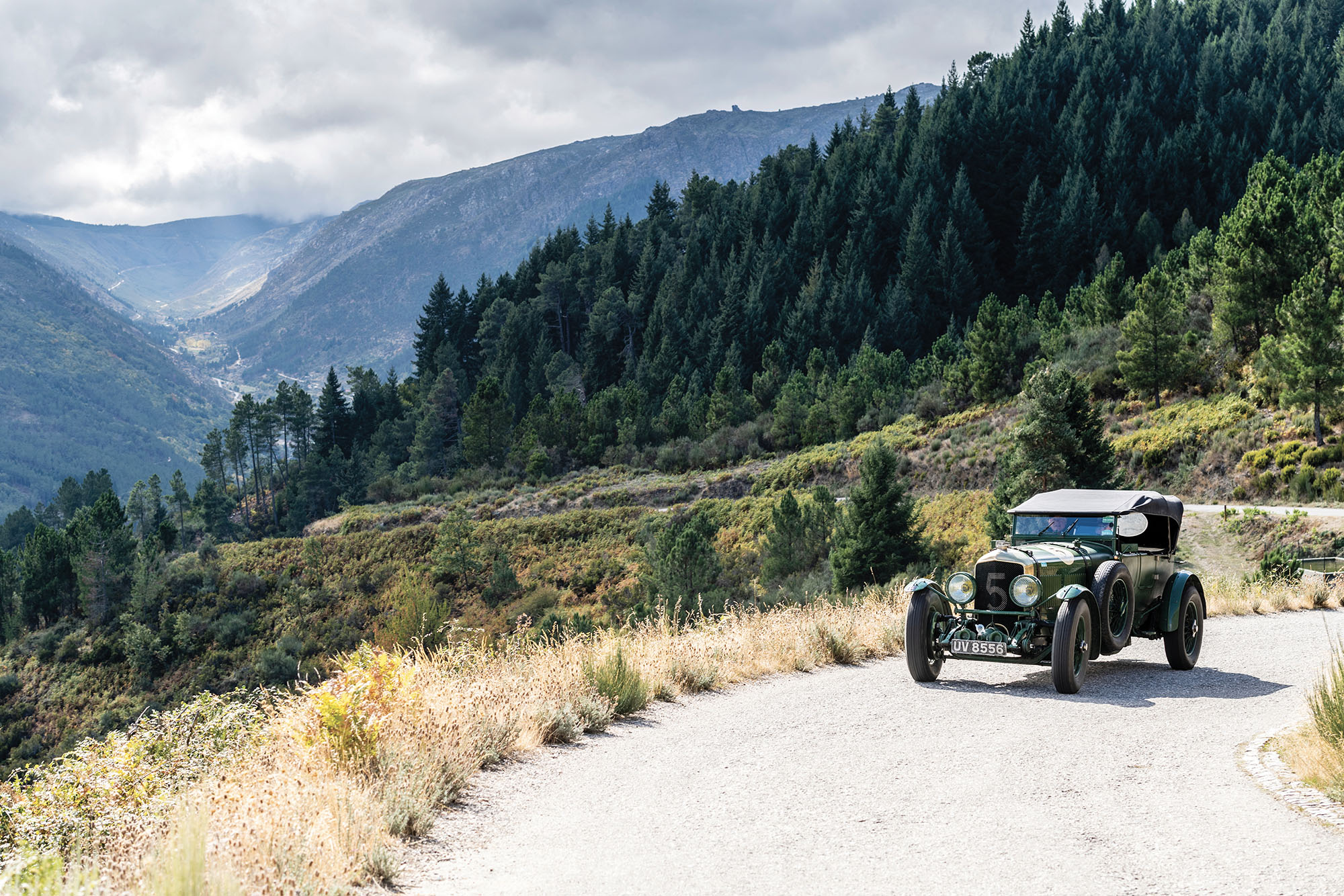 Rally the Globe Bentley mountains