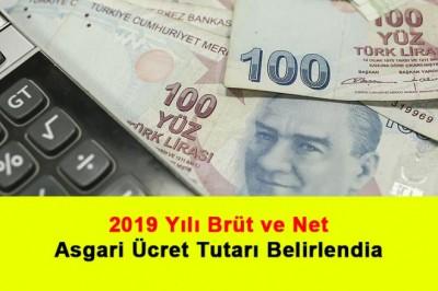 2019 Yılı Brüt Ve Net Asgari Ücret Tutarı Belirlendi