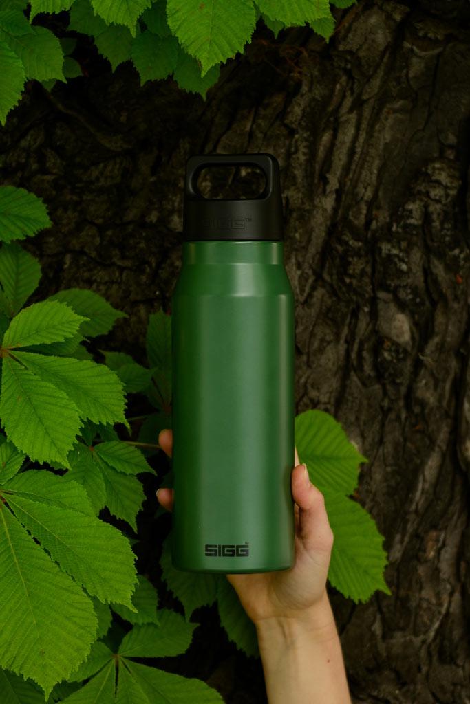 Leaf Green 0.55 Adult Explorer Leaf Green Stainless Steel Water Bottle Sigg Unisex