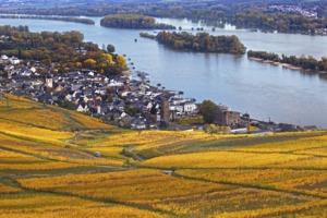 Rudesheim, Rhine Valley, Germany