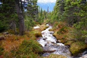 Dewey Lakes Trail, Skagway