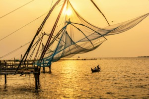 Traditional fishing in Kochi, India