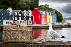 Tobermory, Isle of Mull, Scotland