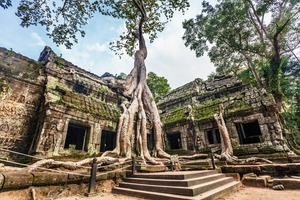 Ta Prohm temple near Siem Reap, Cambodia