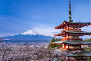 Mount Fuji in Cherry Blossom Season, Japan