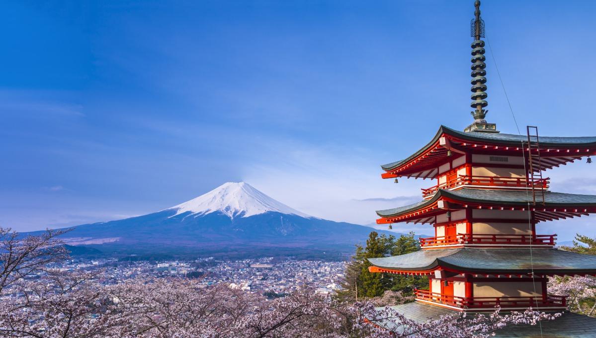 Spring cruise destinations - Mount Fuji during cherry blossom season, Japan