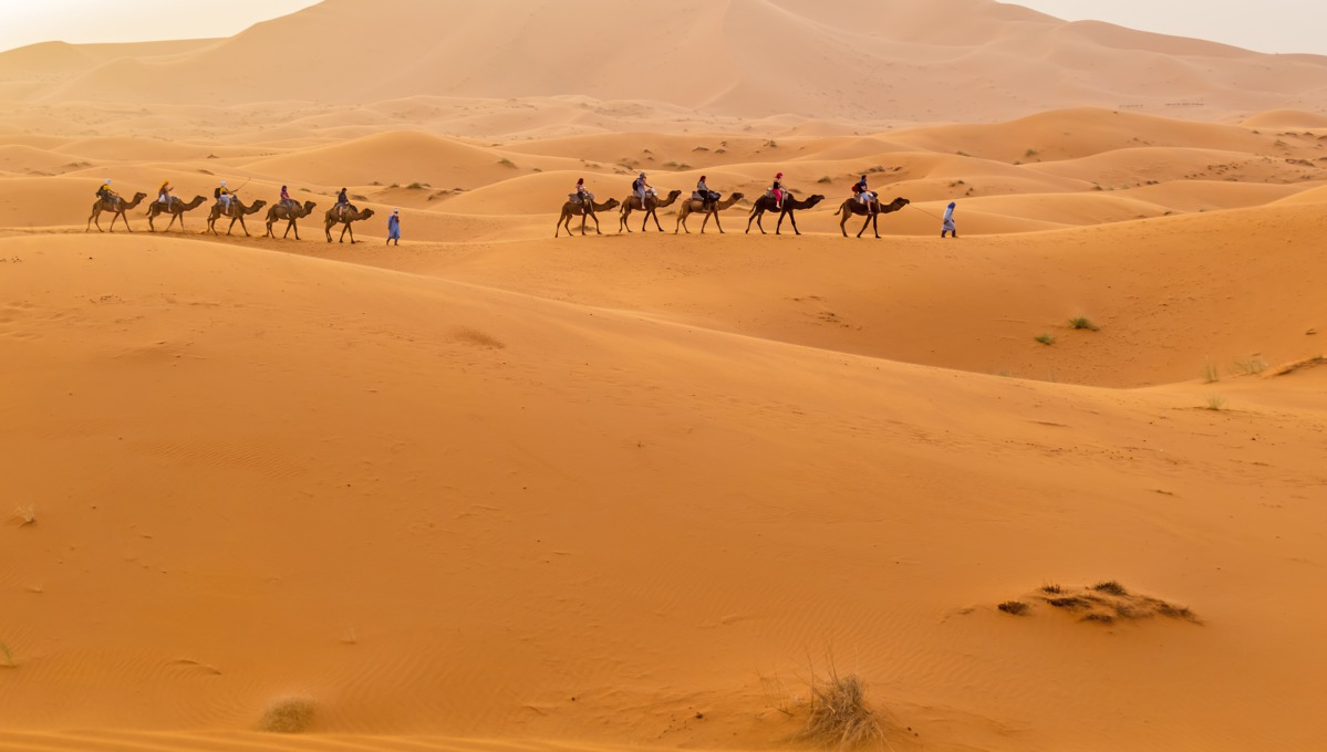 Africa, Arabia & Indian Ocean cruises - Merzouga, Morocco