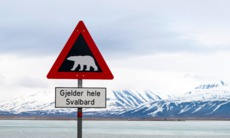 Polar bear warning sign, Svalbard