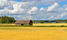 Rural landscape in the Aland Islands, Finland