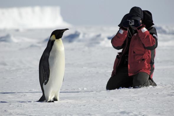 Photographer and penguin in Antarctica