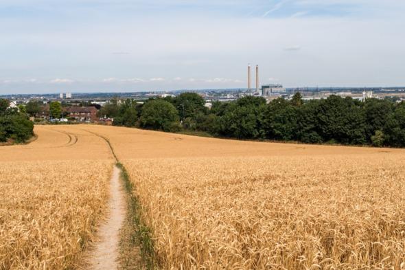 Fields near Tilbury, UK