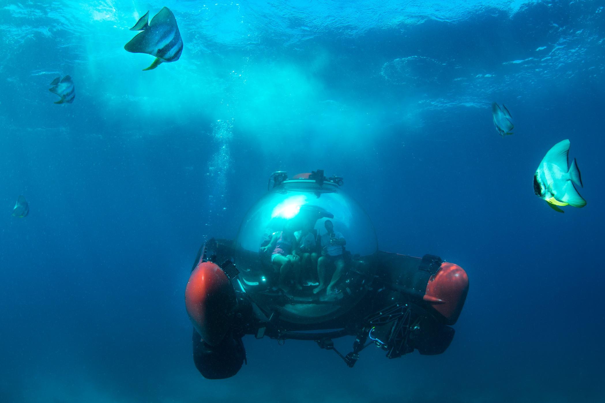 Crystal Cruises - Crystal Esprit submersible underwater