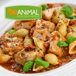 Chicken & Pasta - +44g Protein