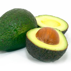 Avocado - Pack of 3