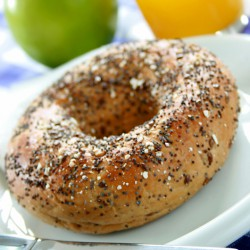 4 Multi Grain Protein Bagels - 26g Protein ***DELISTED***