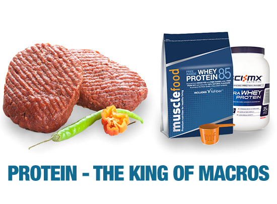 Supplement protein VS natural protein/><br /> 