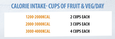 Calorie intake to cups of fruit table