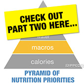Andy Morgan's article on Macros, Fibre and Alcohol