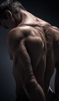 Reflective Bodybuilder