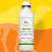 Fresh Raw Camel Milk Now Available!