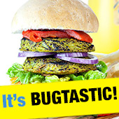 Bug burgers - 66% less fat then beef!!!
