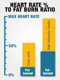 Horowitz's chart