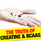 The Truth of Creatine and BCAAs