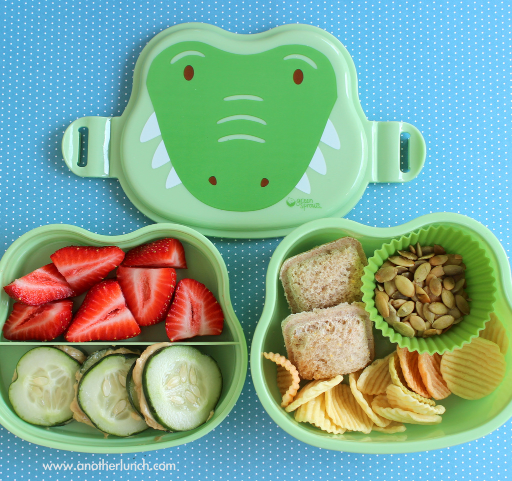 Happy Crocodile Lunch box