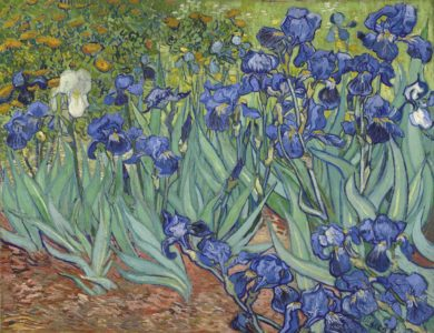 Vincent Van Gogh, Irises, 1889, Los Angeles, The J.Paul Getty Museum., © Bridgeman Images