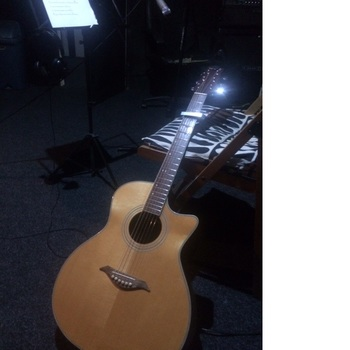 Hi I am Steve I have been teaching guitar for 7 years I like to work with beginners and intermediate players who want to play and sing to the songs they like