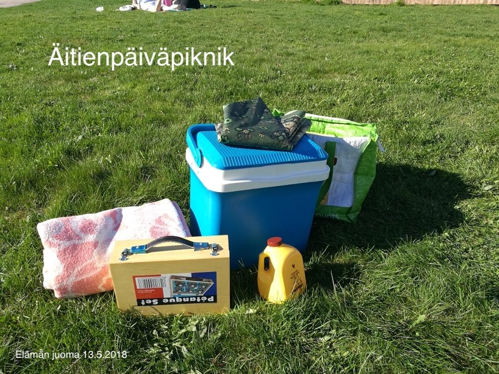 Aloe Vera Gel 13.5.2018 piknik blogi.jpeg
