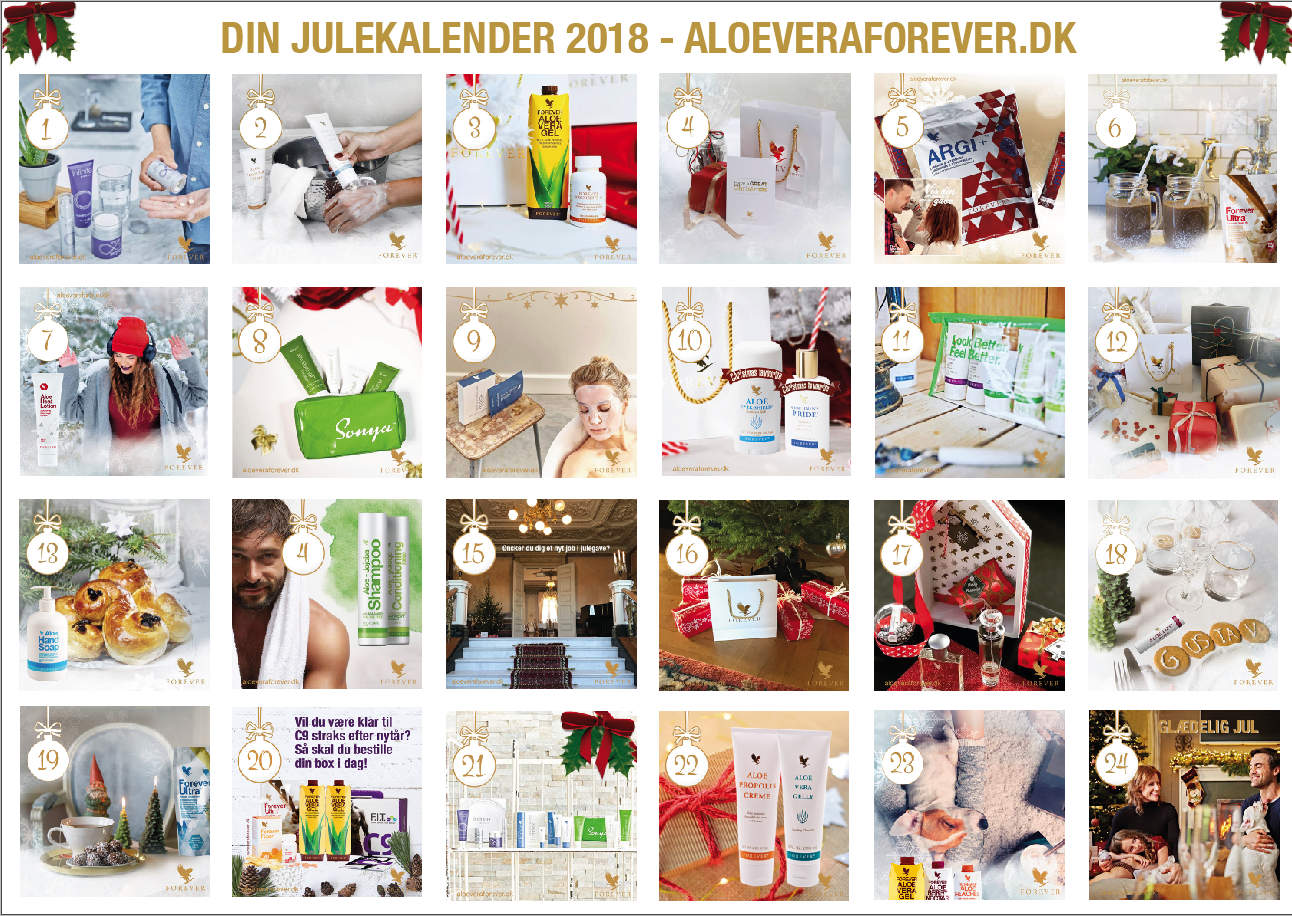 Aloe Vera Forever DK Julekalender 2018 forside.png